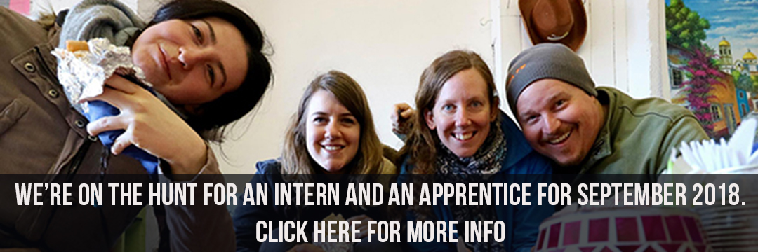 Internship & Apprenticeship